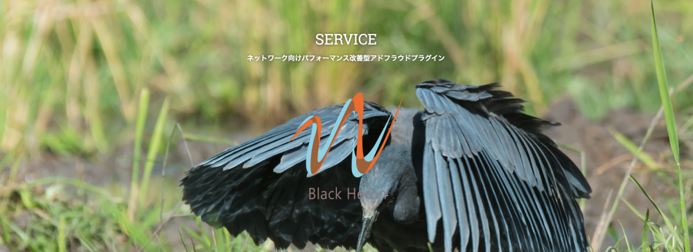 スクリーンショット 2015-06-05 13.25.31