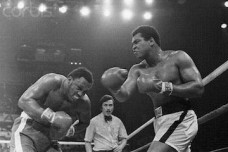 Muhammad Ali Punching Joe Frazier