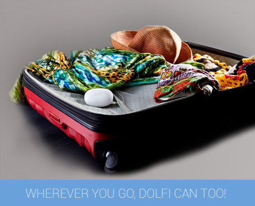 jp-5-dolfi-can